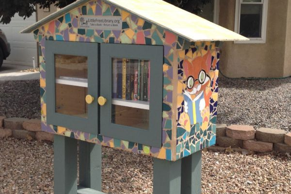 little free library albuquerque reading initiative