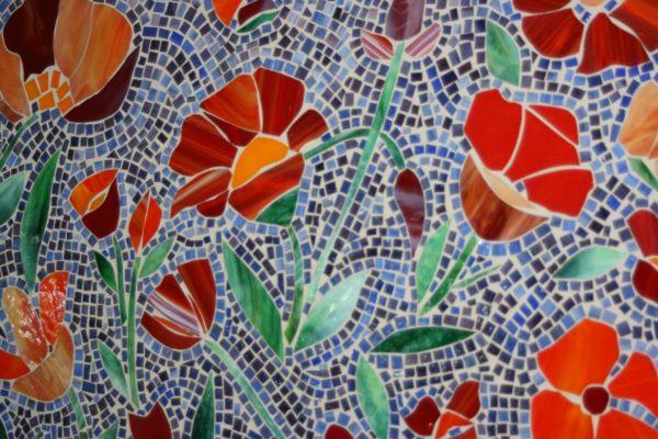 summer-poppies-zmd-albuquerque